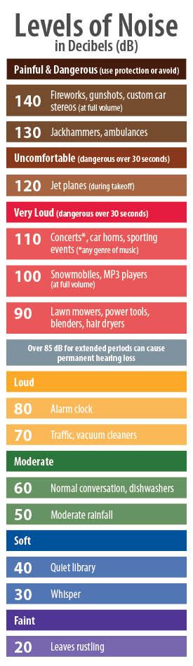 Hearing Protection guide